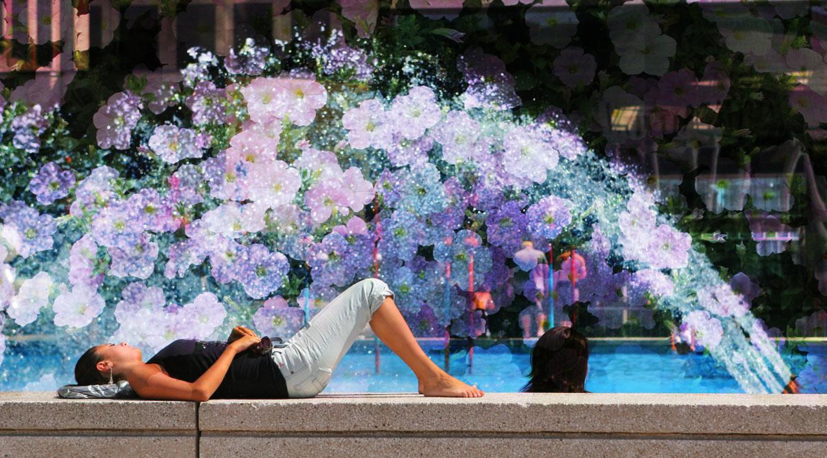 Flowers Splash - RF Stock Image