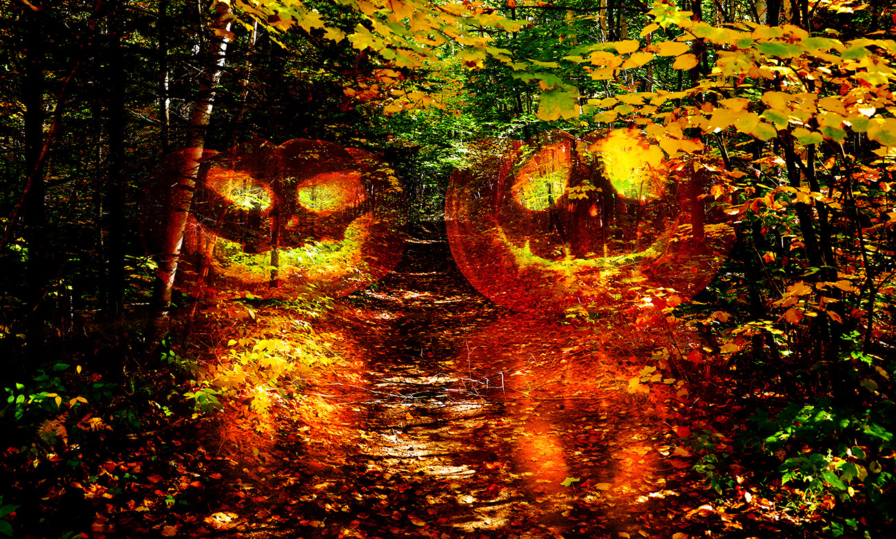 Halloween Scary Wood 1 - RF Stock Image