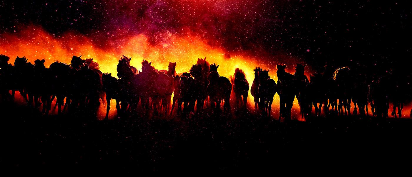 Blazing Group Of Horses Running - RF Stock Image