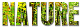 Nature Royalty-FreeStock Photos
