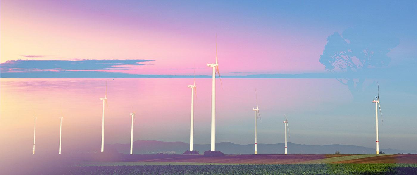 Windmills at Sunset 02 - RF Stock Image