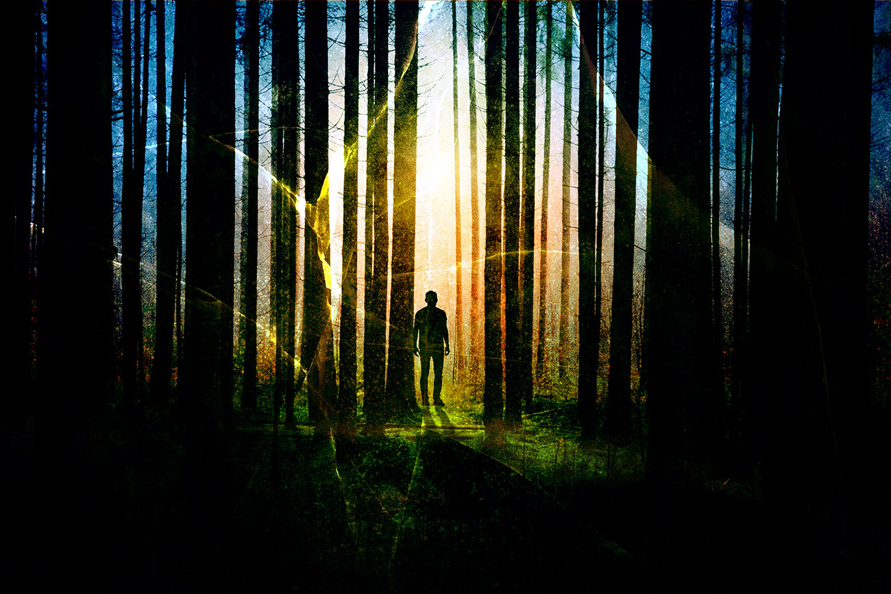 Surreal Apocalyptic Woods 01 - RF Stock Image